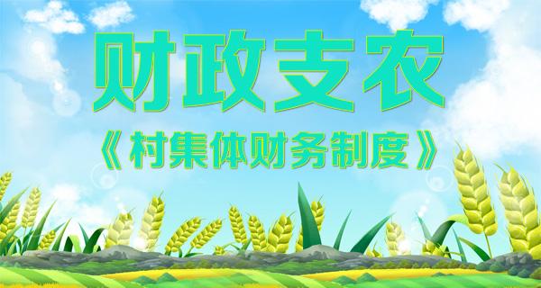 财政支农——村集体财务制度