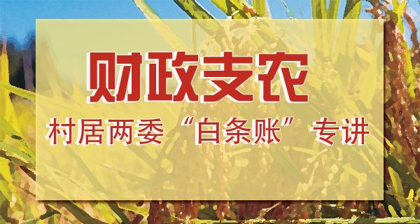 """财政支农——村居两委""""白条账""""专讲"""
