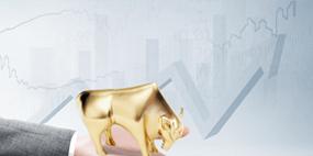 证券企业会计课程实训